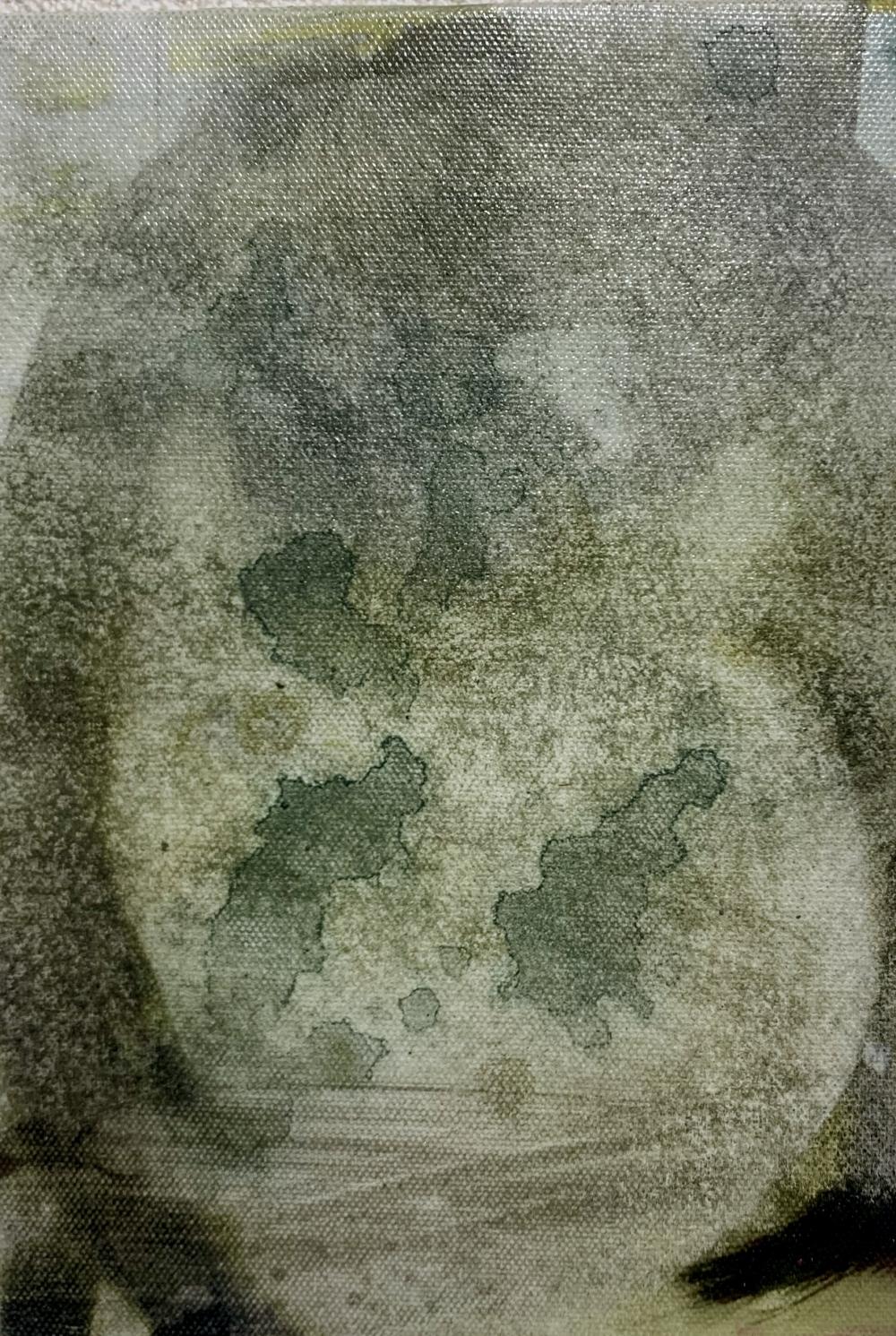 exid927wid883 / 現代美人漂白画