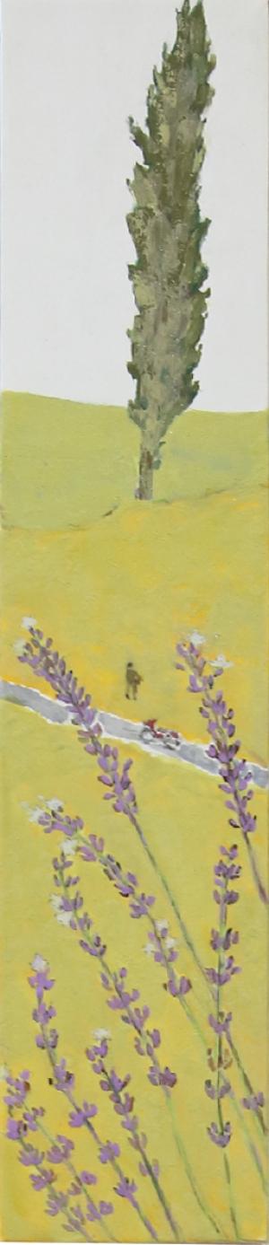 exid15680wid1496 / lavender