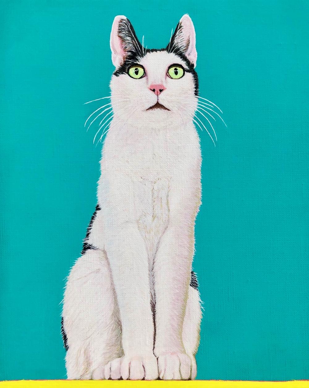 exid456wid439 / Cat 8