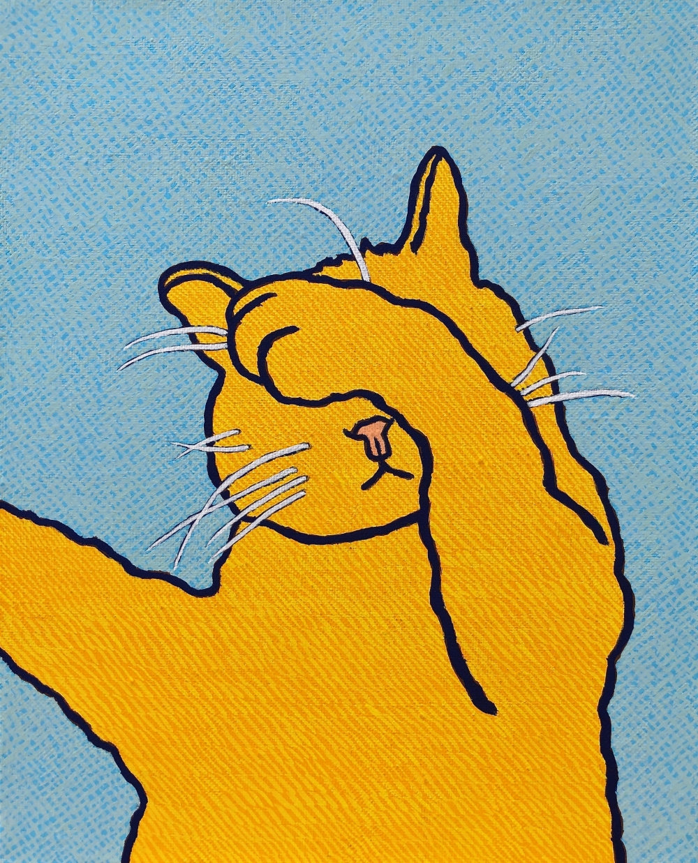 exid982wid938 / Noon Cat 13