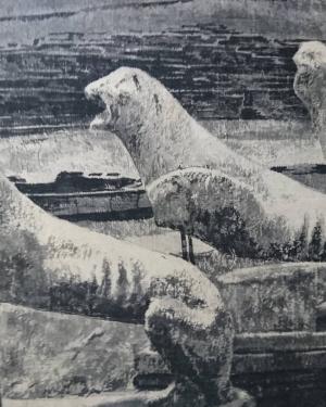 中島 淳志/デロス島のライオン