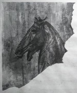 exid38940wid36753 / カピトリーニの馬