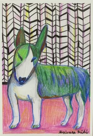 exid606wid580 / Bull terrier