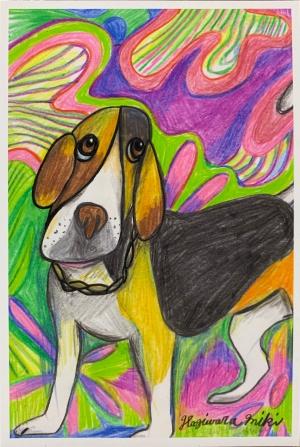 exid603wid577 / Beagle