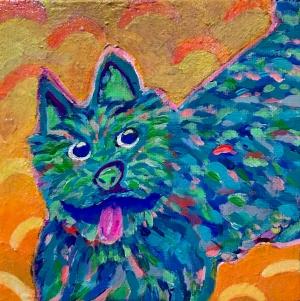 exid584wid559 /  Norwich Terrier