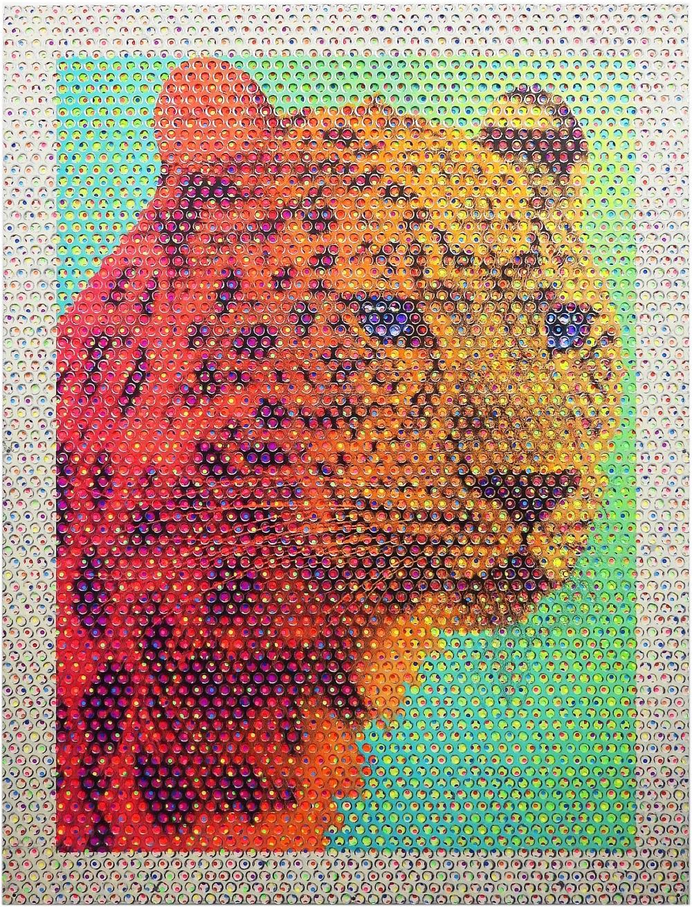 内田 有/Leopard/exid39623wid37436