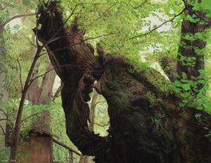 exid35437wid31207 / 木を見ている時-1