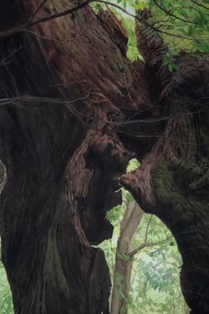 CAI QIN/木を見ている時-1