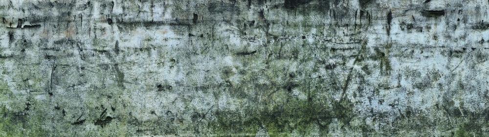 exid1574wid1618 / 沼地のある武蔵野の風景 〈所在地: 西池袋1丁目1 東武デパート北搬入口〉