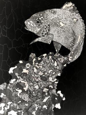 exid790wid752 / Abstract Sea Bream
