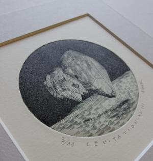ema kawanago/Lévitation XLIII
