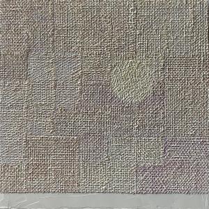 exid36864wid35221 / C Moonの白