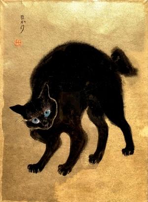 exid39471wid37284 / kitten blue