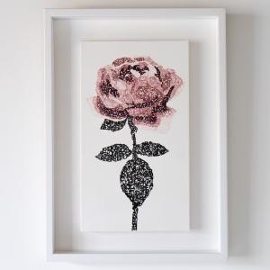 exid275wid207 / Rose