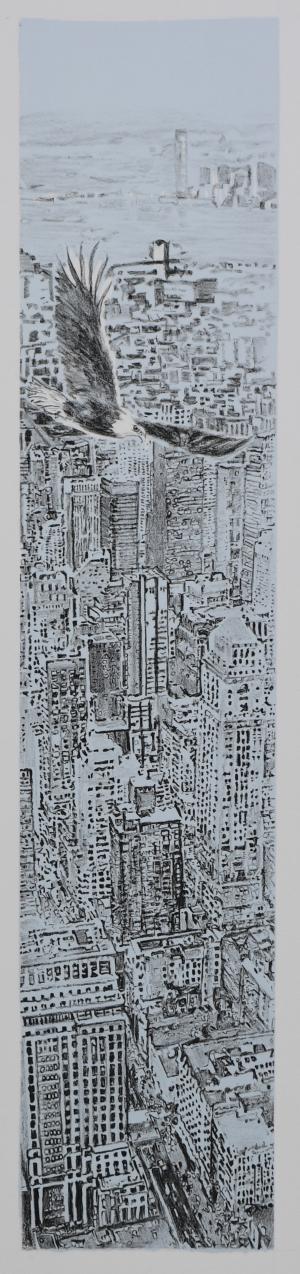 exid35941wid34298 / Manhattan