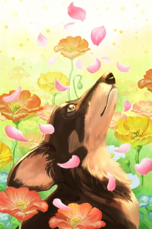 exid37244wid35601 / 思い出すときお花が降るね