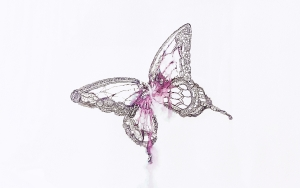 exid40106wid37919 / 蝶々
