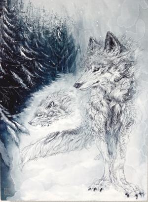 exid32776wid31428 / 雪の森